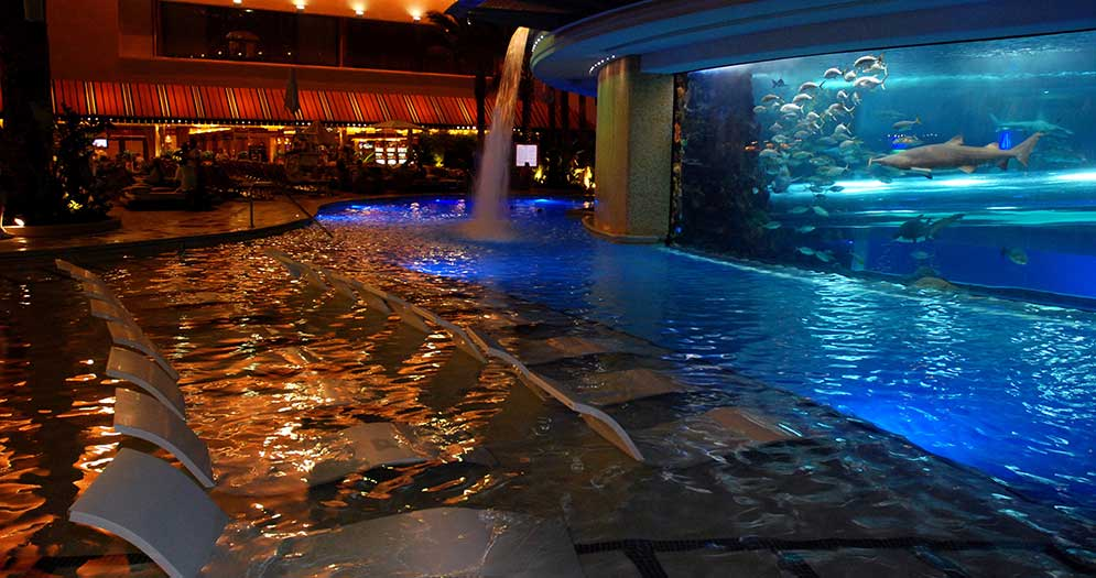 Best Commercial Pools - The Golden Nugget Tank Pool - Las Vegas