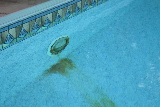 Do I Need To Acid Wash A Pool?